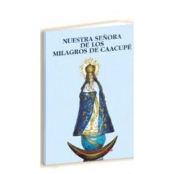 Nuestra Señora de los Milagros Caacupé