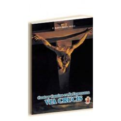 Vía Crucis, Canta y camina en la esperanza